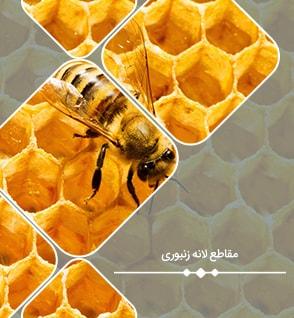 مقاطع لانه زنبوری : معرفی، مزایا و معایب، نحوه ساخت و مدلسازی تیر لانه زنبوری در ایتبس